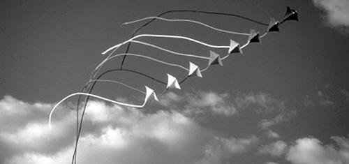 Vliegers oplaten en verder niets